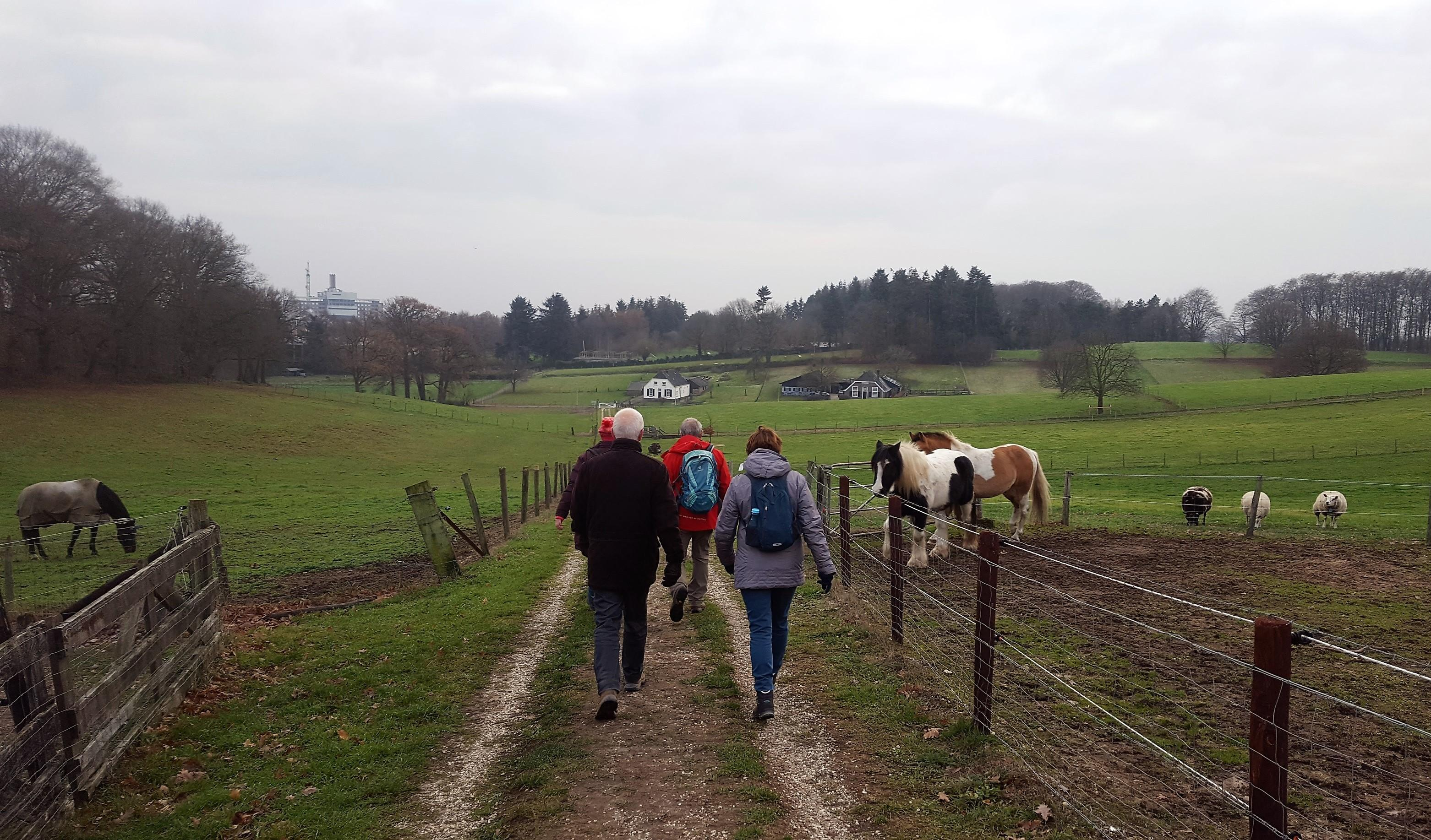 Regio dating Arnhem